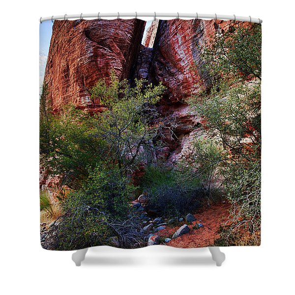 In The Canyon Shower Curtain
