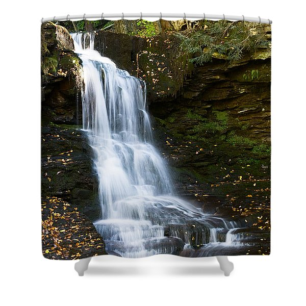 Is It Cottonwood Shower Curtain