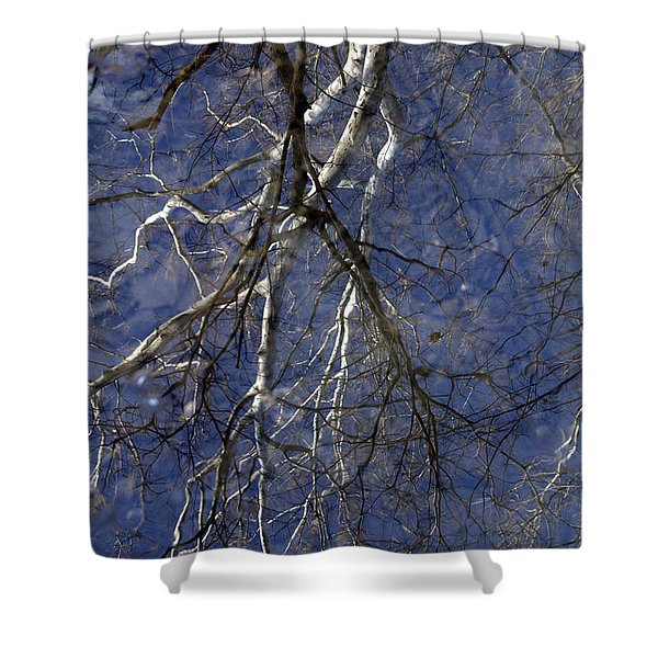 Ivory Reflections Shower Curtain