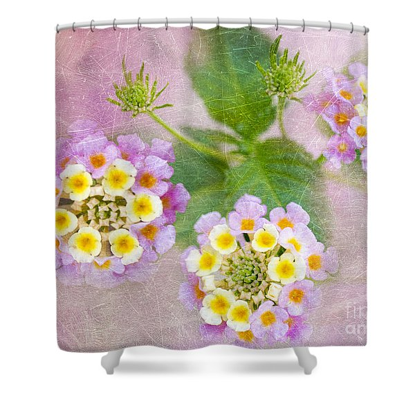 Lantana Camara Confetti Shower Curtain