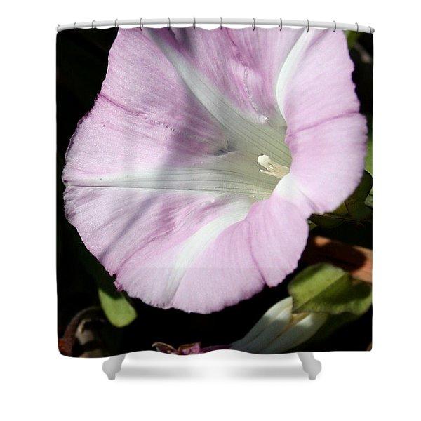Lavender Mist2 Shower Curtain