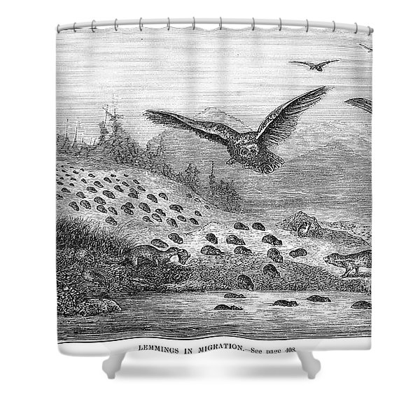 Lemming Migration Shower Curtain