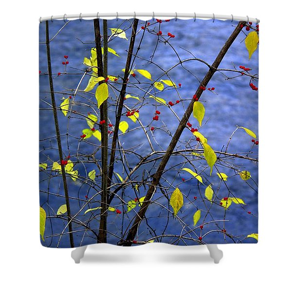 Lemonettes Shower Curtain