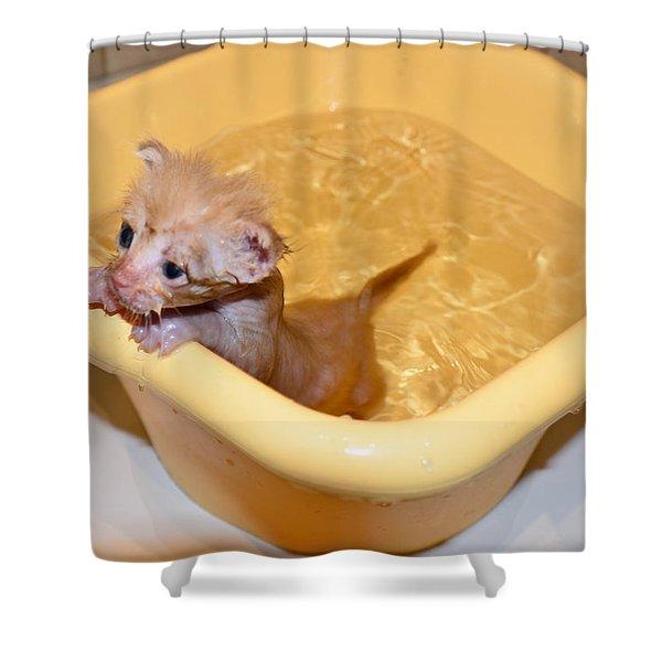Little Bath Shower Curtain