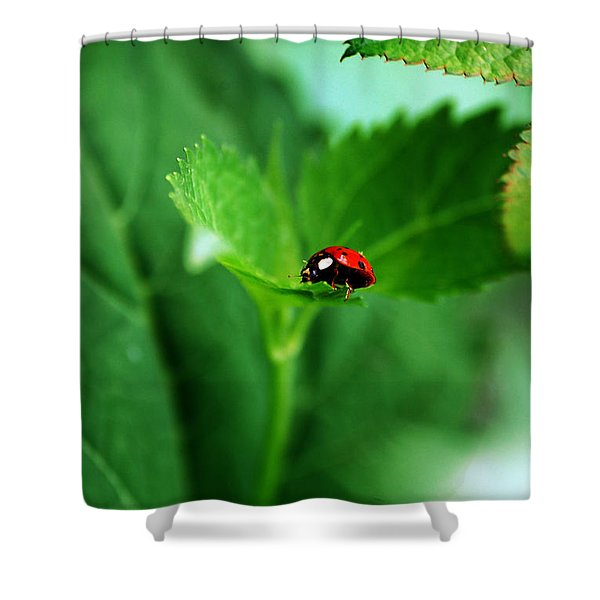 Little Red Lady Shower Curtain