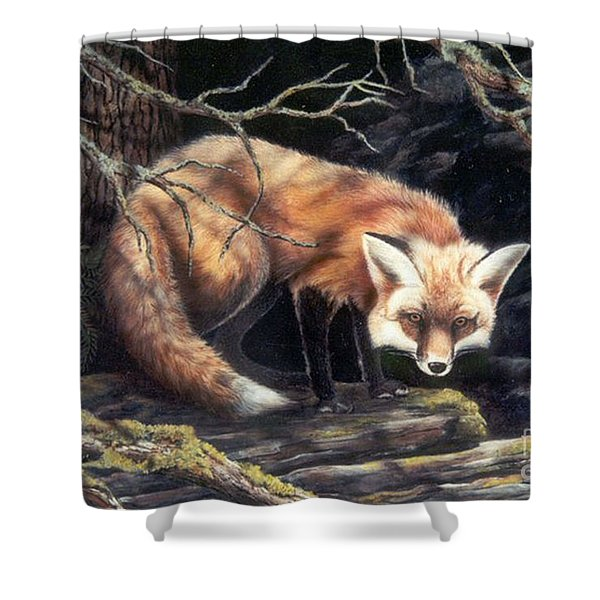 Looking For Lunch   Sold Shower Curtain
