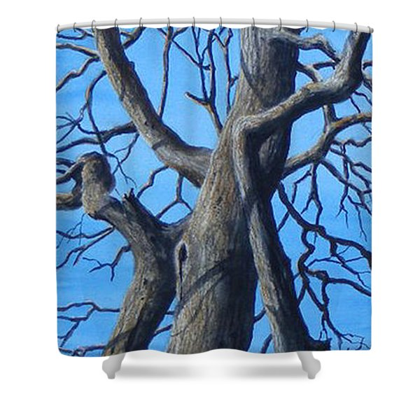 Looking Up   Sold Shower Curtain