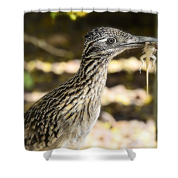Lunch Anyone Shower Curtain