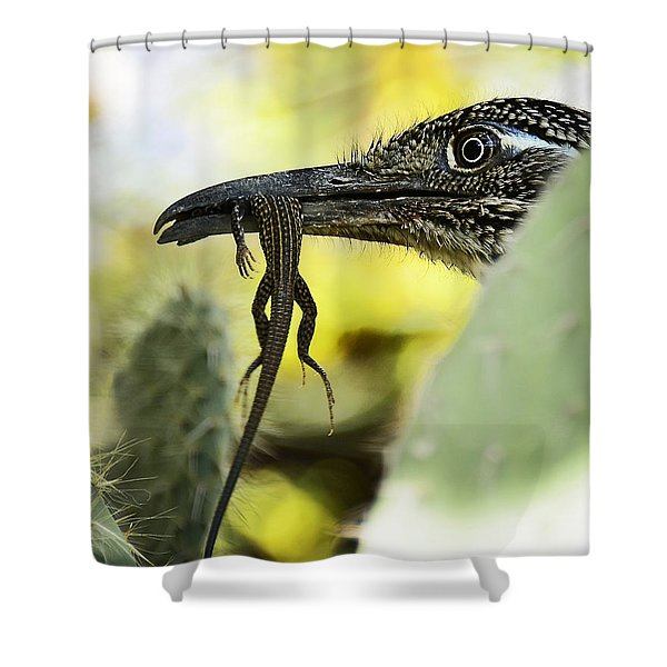 Lunch With A Roadrunner  Shower Curtain