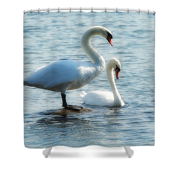 Mating Pair Shower Curtain