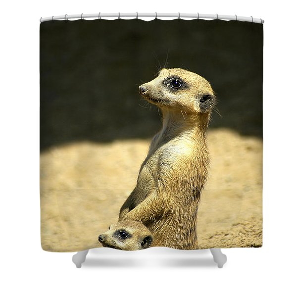 Meerkat Mother And Baby Shower Curtain
