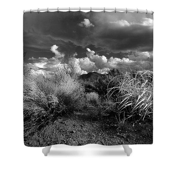 Mesa Dreams Shower Curtain