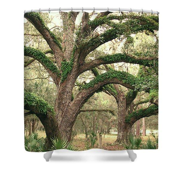 Mighty Oaks Shower Curtain
