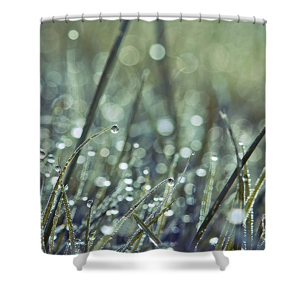 Mondo 02 - S02c Shower Curtain