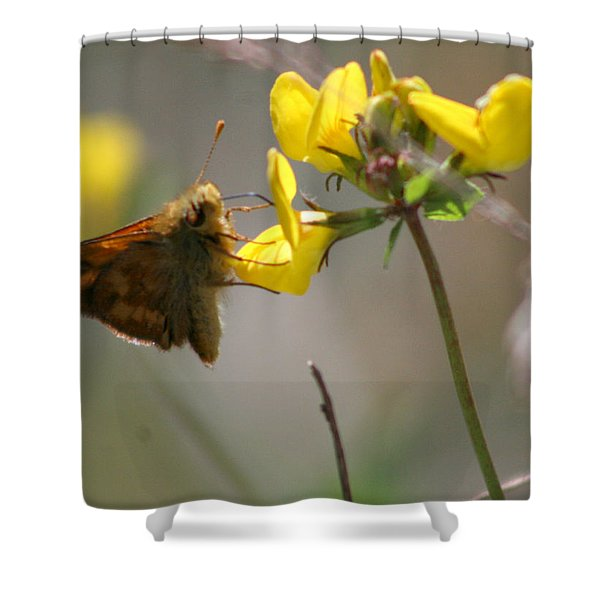 Moth Life Shower Curtain
