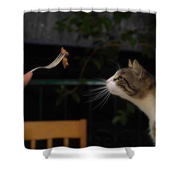 My Best Most Beloved Cat Shower Curtain