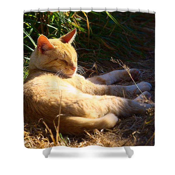 Napping Orange Cat Shower Curtain