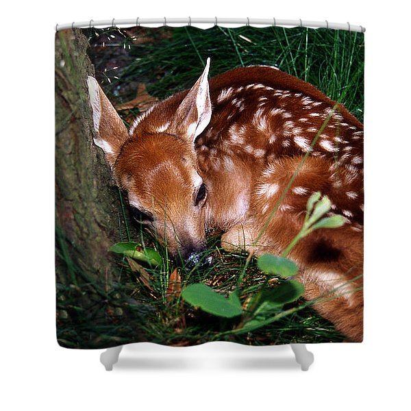 Nature's Precious Creation Shower Curtain