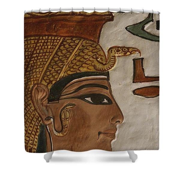 Nefertari Tomb Scenes Detail, Valley Shower Curtain