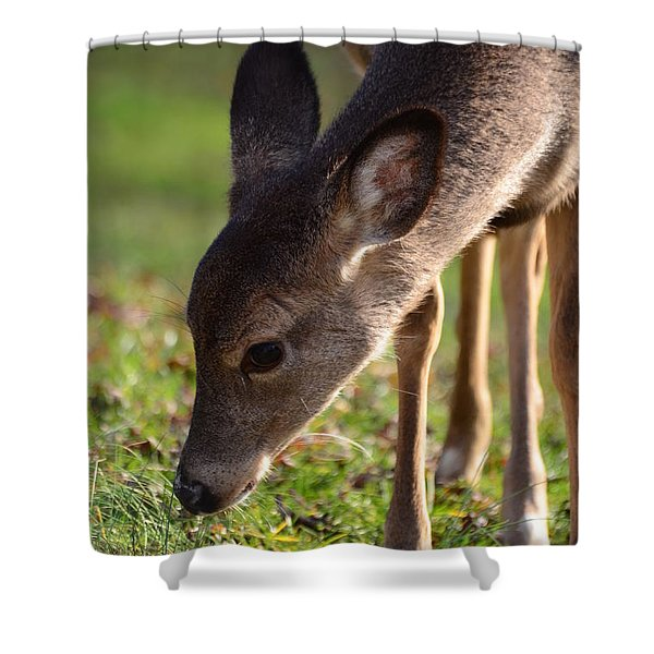 Oh So Sweet Shower Curtain