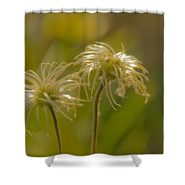Oldness Shower Curtain