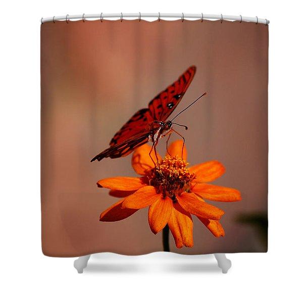 Orange Butterfly Orange Flower Shower Curtain