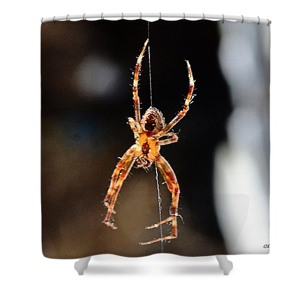 Orange Spider Shower Curtain