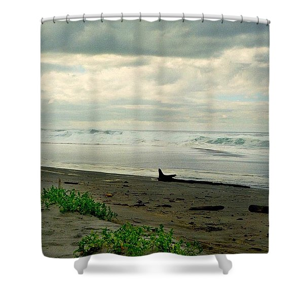 Oregon Coast 17 Shower Curtain