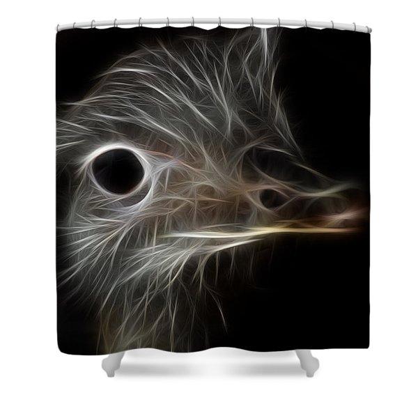 Ostrich Fractalius Shower Curtain