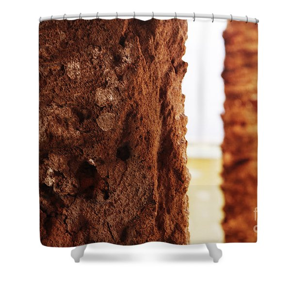 Shower Curtain featuring the photograph Palm And Wall 2 by Agusti Pardo Rossello