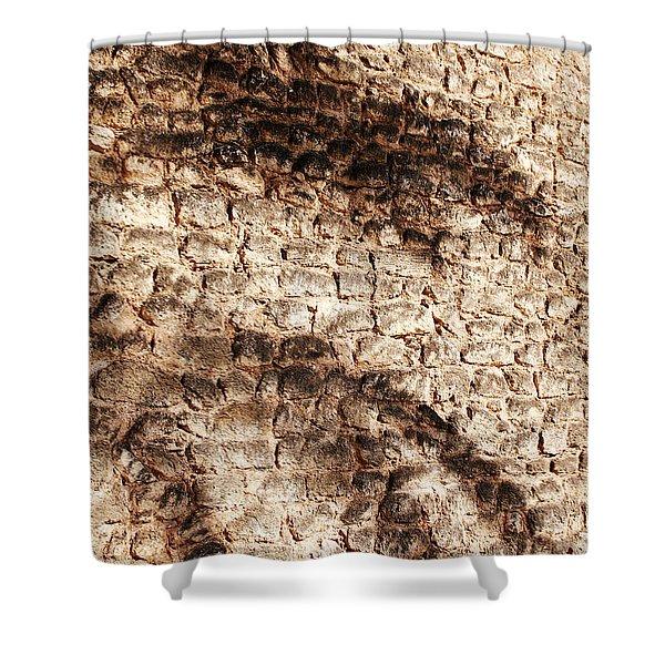 Palm Fragment Shower Curtain