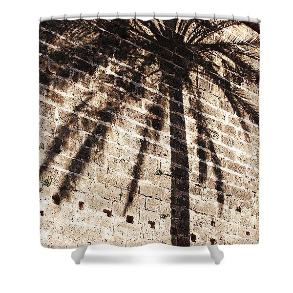 Shower Curtain featuring the photograph Palm Shadow by Agusti Pardo Rossello