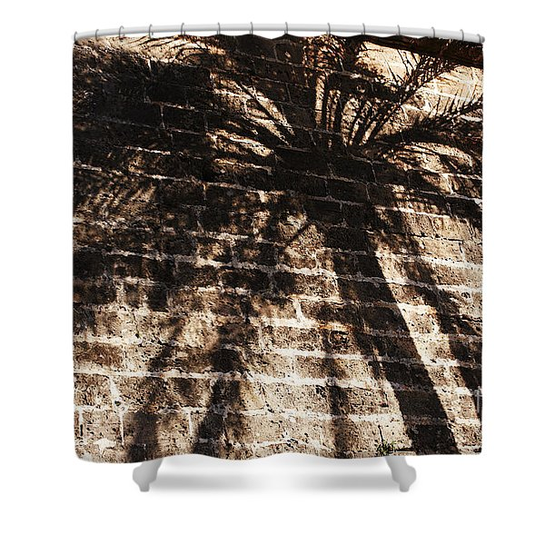 Shower Curtain featuring the photograph Palm Tree Cup by Agusti Pardo Rossello