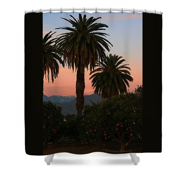 Palm Trees And Orange Trees Shower Curtain