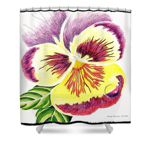 Pansy With Raindrop, 06-2012 By Anna Shower Curtain