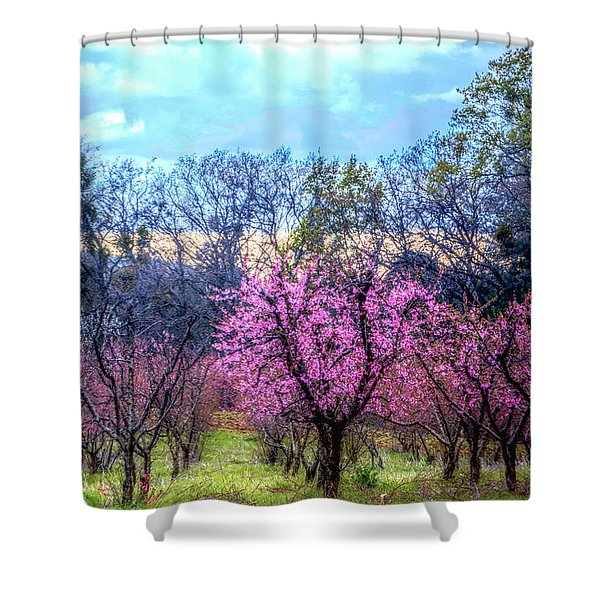 Peachy Blossum Scene2 Shower Curtain