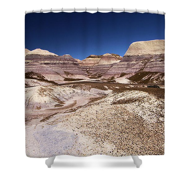 Petrified Forest Blue Mesa Shower Curtain