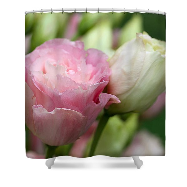Pink And White Lisianthus Shower Curtain
