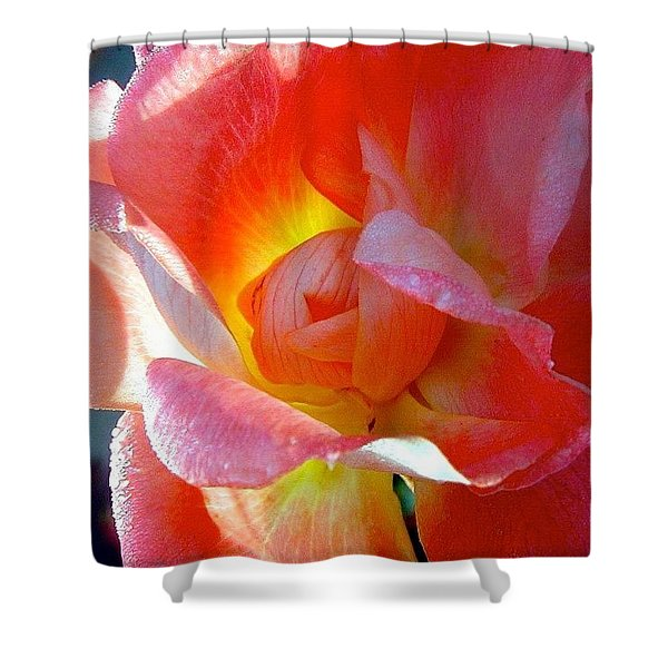 Pink Rose Inside By Anna Porter Shower Curtain