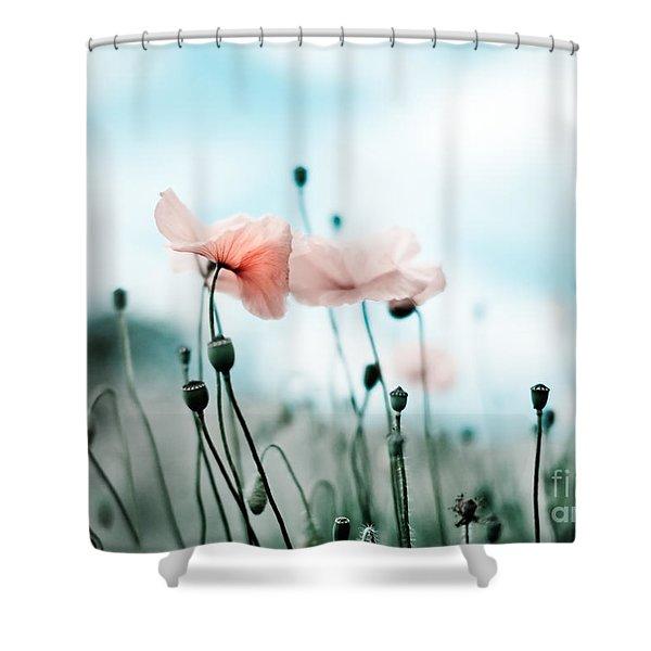 Poppy Flowers 02 Shower Curtain