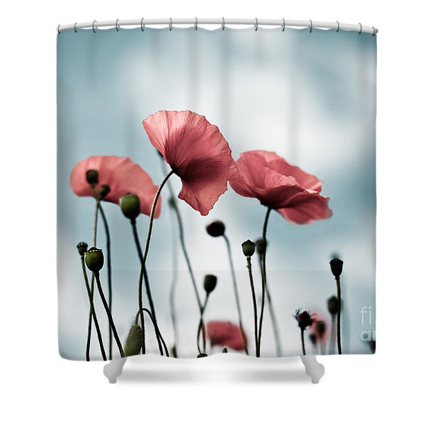 Poppy Flowers 07 Shower Curtain