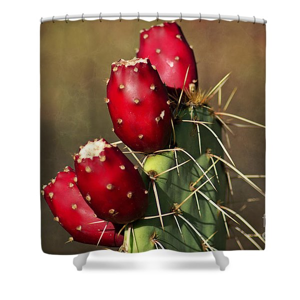 Prickley Pear Fruit Shower Curtain