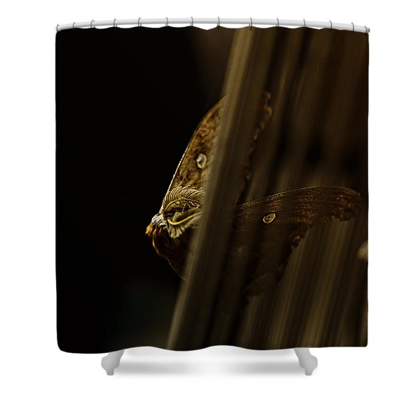 Prisoner Of The Vortex Shower Curtain