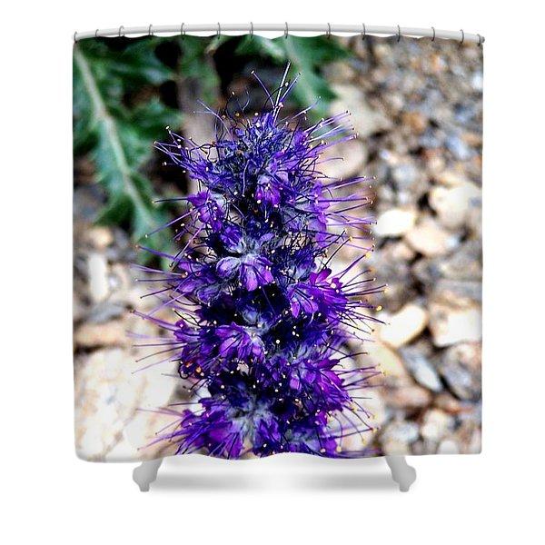 Purple Reign Shower Curtain