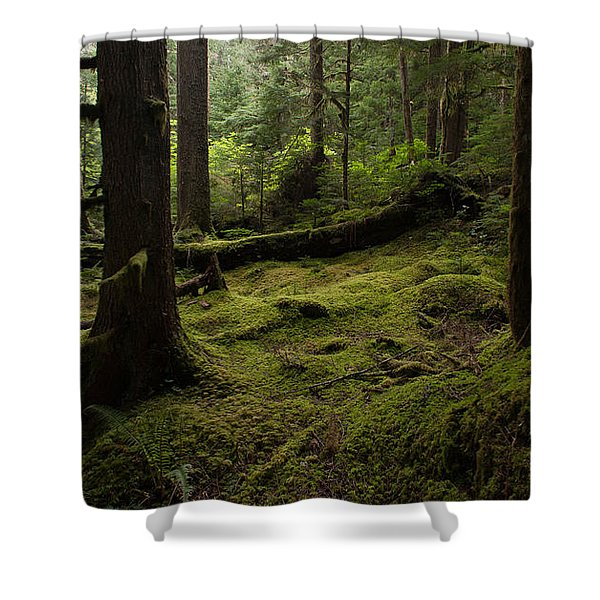 Quietly Alive Shower Curtain