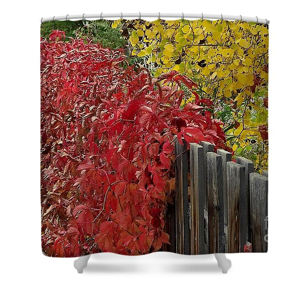 Red Fence Shower Curtain