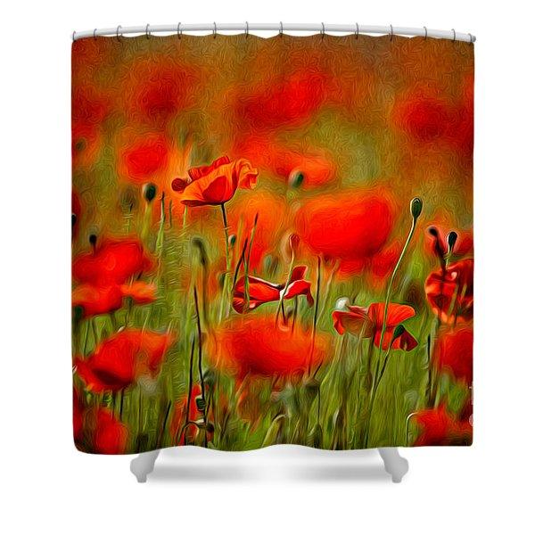 Red Poppy Flowers 02 Shower Curtain