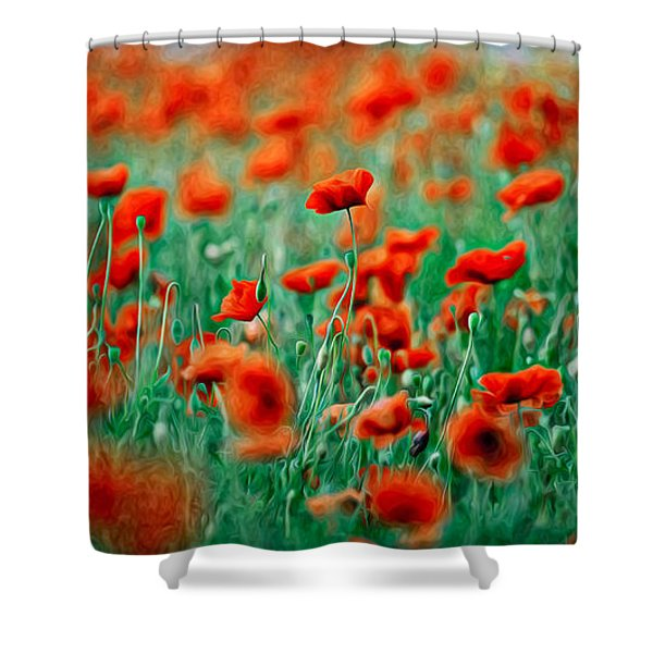 Red Poppy Flowers 04 Shower Curtain