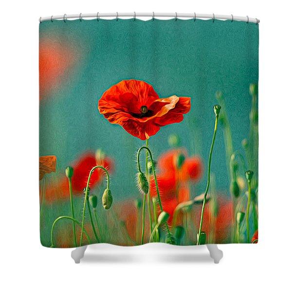 Red Poppy Flowers 06 Shower Curtain