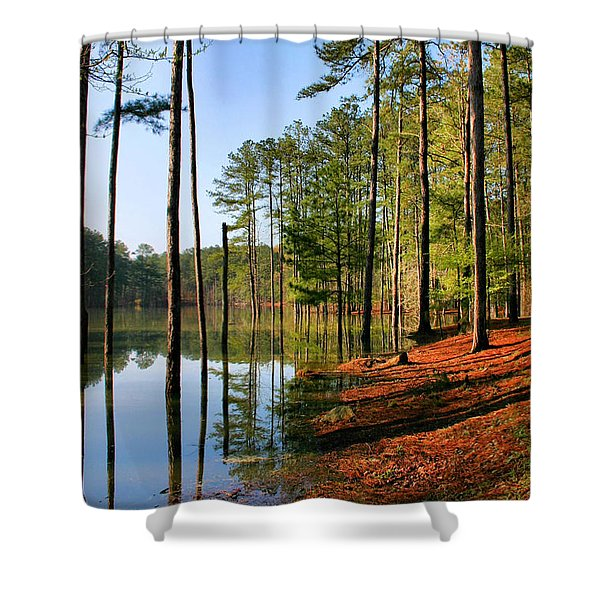 Red Top Mountain Shower Curtain